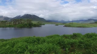 nature and landscape concept - view to to island in lake or river in ireland valley