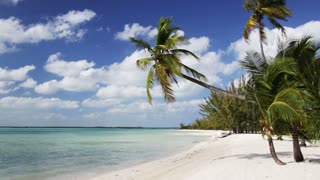 vacation, nature, sea sailing, summer and leisure concept - tropical beach with palm trees and boat
