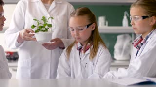education, science and school concept - students and teacher with plant at biology class