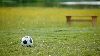 A black and white football ball is lying on the lawn near the bench and no one is playing with it. There are green grass and a wooden bench in the background