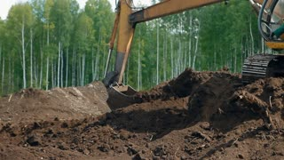 An excavator loosens the ground near the forest, takes it with a bucket and puts it into the truck
