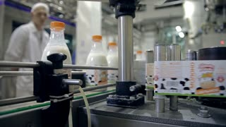 Bottles with cow milk are moving on the conveyor. Bottles are closed with lids and it remains only to stick labels. Labels are glued automatically by the mechanisms