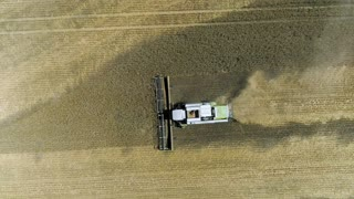 A harvester is collecting the crop. A top view