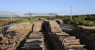 A huge ground for logging