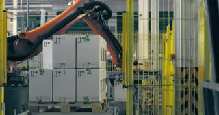 A jointed robotic arm at the packaging line
