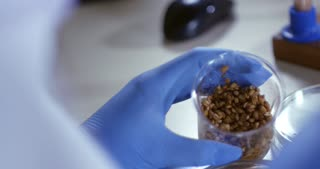A lab assistant is studying the seeds of plants