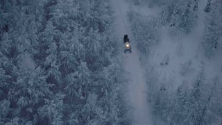 A snowmobile with a forester is riding through the woods at night