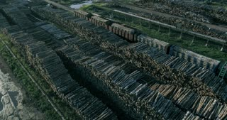 Industrial deforestation