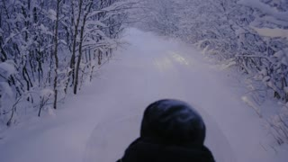 Snowmobile ride through the woods at night