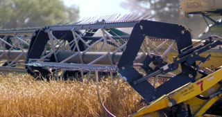 The reel of a harvester