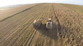 Aerial shot of farm machinery working in the field. Combine harvester gathering corn and pouring it into truck