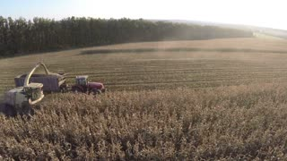 Aerial shot of gathering crops on farmland. Combine and tractor busy on harvest season