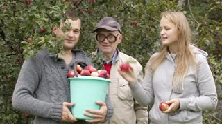 Husband, wife and grandfather with fruitage. Man holding full bucket of fresh apples, woman putting some fruit on the top, then all looking to the camera.