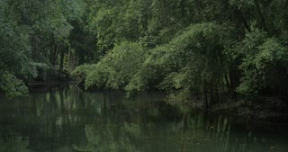 Pond with empty boat and trees around it. Benches to relax and enjoy the view near the banyan tree. Trang An, Vietnam