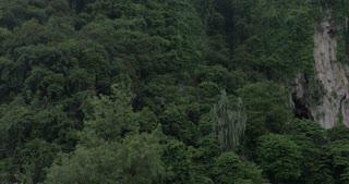 Seen green mountains and statue of Murugan at Batu Caves, Malaysia. Hindu deity