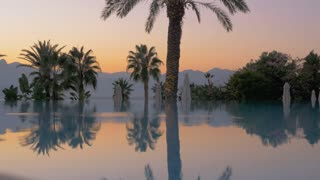 Mirror surface of a pool reflecting palm trees and flower bush behind it. Misty mountain silhouettes can be seen in the background against light sky