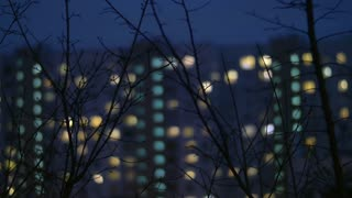 Night view of bare tree branches with defocused apartment block in background. Window lights in the darkness