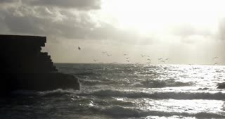 Slow motion shot of sea-gulls flying over the rough sea at the stone walls of ancient city Acre, Israel
