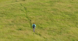 Lone female hiker walks across a field with tall green grass. Slow motion, extreme long shot.
