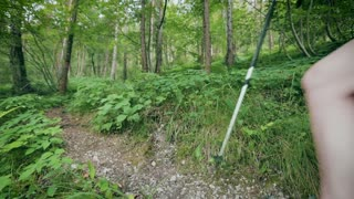 A female hiker walking with sticks on a narrow trail in a green forest. Wide angle footage.