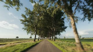 A point-of-view footage from a car driving on a countryside road surrounded by trees and farming fields.