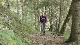 An active woman hikes alone in an Alpine forest in Austria.