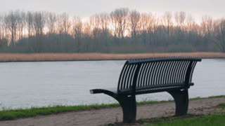 Autumn or early winter scene of a bench by a river. Static footage.