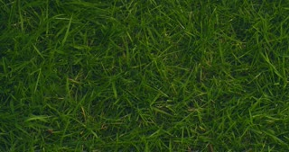 New home or mortgage - slow motion top view of a female hand cleaning a grass space and placing a cutout house over it.