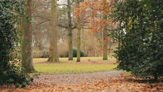 Static footage of a city park by autumn. Shallow DOF, focus on the walking path.