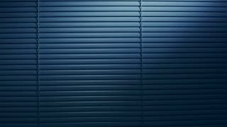 Vertical dolly shot of closed Venetian blinds by night.