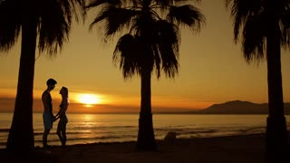 Couple embracing on the beach at sunset with palm trees.