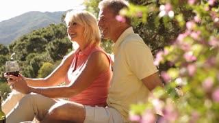 Lift up shot of senior couple enjoying picnic in countryside.