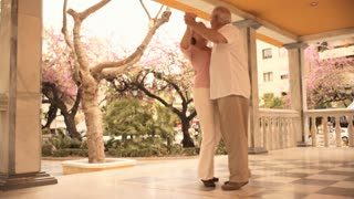 Mature couple in park dancing