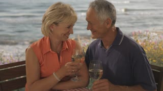 senior couple toasting each other at beach cafe by sea