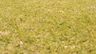 Tilt up slow motion shot of five children running towards camera in park.