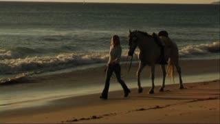 Woman leading horse at seashore,