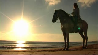 Woman on horse at seashore, walking on sand towards sea