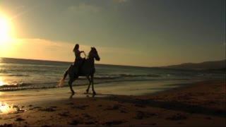 Woman on horse at seashore, walking