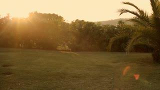 young girl doing cartwheel in sunset