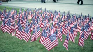 american flags during a ceremony