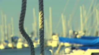 boat ropes closeup