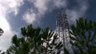 cell tower and trees