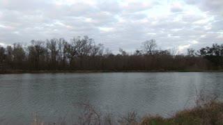 crane past Louisiana wetlands