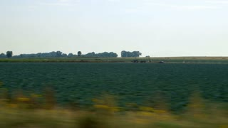 driving next to crops in a field.