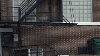 establishing tilt shot of a fire escape on the sidr of an old building 4k