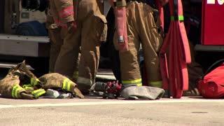 firefighter gear editorial