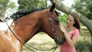 girl petting her horse closeup
