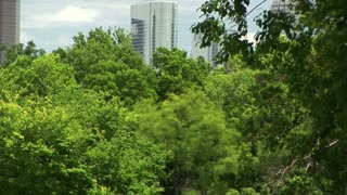 green space in Houston Texas