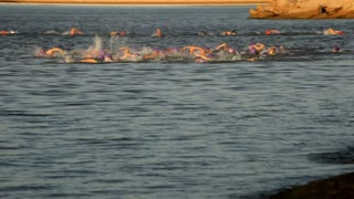 group of swimmers in a triathalon swim