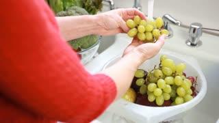 hand held washing fruit